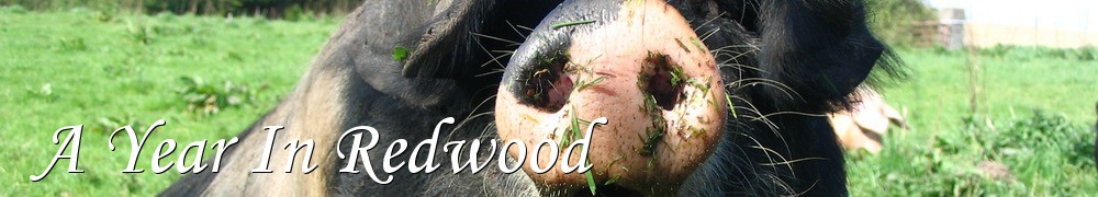 Very Good Recipes - A Year In Redwood