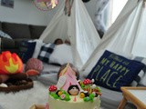 Camping Themed Birthday Cake and Party Ideas