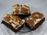 Enjoy In This Fudgy s'mores Brownies
