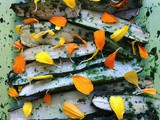 Zucchini with marigold vinegar and marigold fresh petals