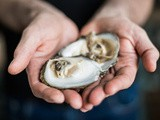 Lough Foyle Irish Flat Oyster to be the star of Northern Ireland's only Slow Food Festival