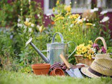 Gardening Like a Healthy Lifestyle