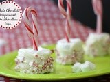 White Chocolate, Peppermint, Marshmallow Pops