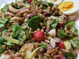 Green lentil salad with delicious sumac dressing & Our memorable trip to the States