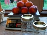 Sweet preservation: Nectarine Jelly