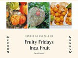 Fruity Friday… The Inca Berry (Cape Gooseberry)