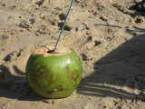 The Coconut….Is it a fruit, a nut or a seed