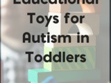 The Best Educational Toys for Autism in Toddlers