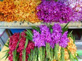 Photo Tour of Yodpiman Flower Market in Bangkok